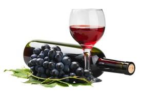 Half Day Wine Tours Yarra Valley