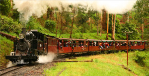 Melbourne Wine Tour + Puffing Billy